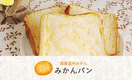 国産温州みかん みかんパン